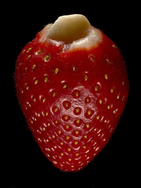 450px-Stuffed_Strawberry